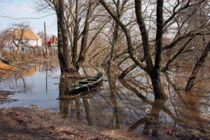 В этом году в зоне подтопления в Тамбове могут оказаться 250 человек